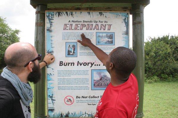 Una guida mostra il manifesto dell'avorio messo al bando-Ivory Burning Memorial Site Nairobi National Park, (foto © Sandro Pintus)