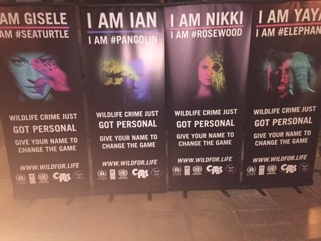 Poster esposti all'UNEA durante l'assemblea UNEA