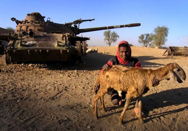 Un uomo fotografato con la sua pecora davanti a un carro armato distrutto durante la guerra tra Eritrea e Etiopia dal 1998 al 2000. L'istantanea è stata scattata nel 2005 REUTERS/Ed Harris