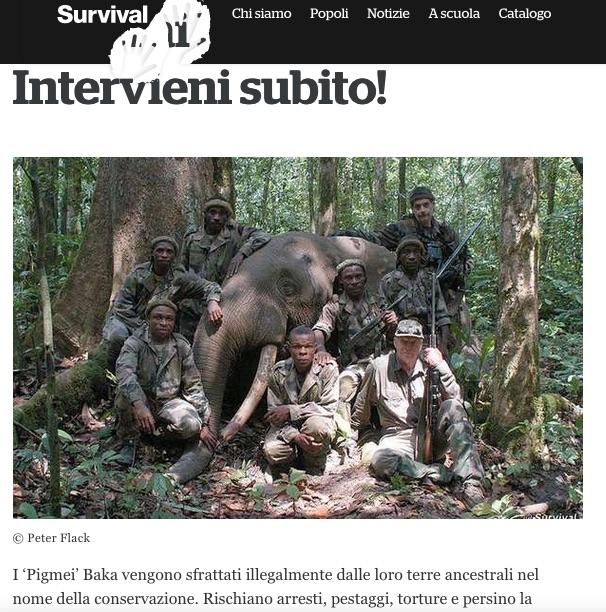 Denuncia di Survival: Vietato cacciare ai pigmei per nutrire le famiglie ma la caccia è possibile per i ricchi occidentali