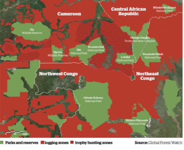 In verde i parchi e le riserve; in rosso le aree di utilizzate per il taglio degli alberi; in rosso a righe le zone dove viene praticata la caccia grossa (courtesy Survival International)