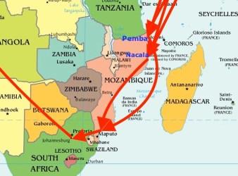 Eroina dai porti del nord del Mozambico arriva a Maputo, poi a Johannesburg per continuare verso l'Europa