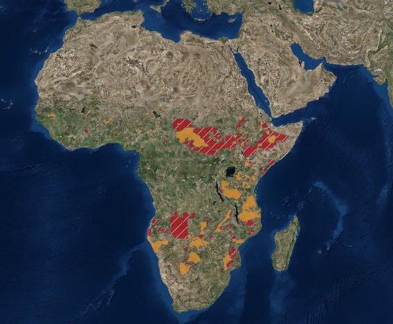 Mappa del 2016 (Panthera e WCS) delle aree dell'Africa dove vive il leone (arancione) e dove è scomparso (rosso) Courtesy IUCN Red List)