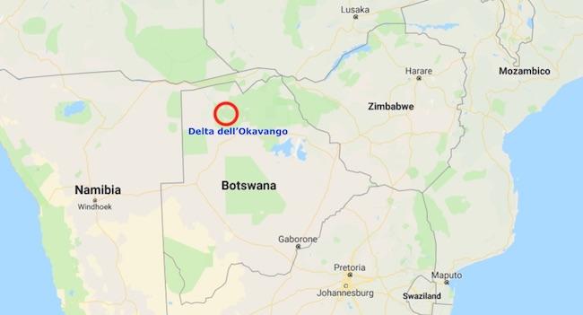 Mappa del Delta dell'Okawango (Courtesy Google Maps)