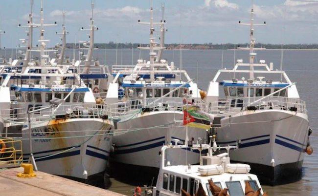 Pescherecci della Ematum ancorati al porto di Maputo