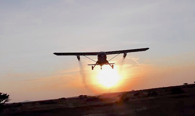 Disinfestazione aerea con insetticita delle lucuste
