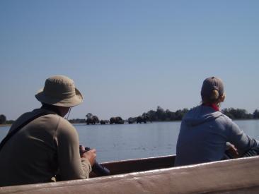 Viewing the Elephant from a Mokoro Canoe in the Okavango Delta