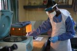 The first large-scale trials of an Ebola experimental vaccine begin in Liberia