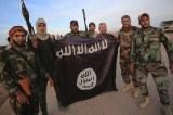 Shia militias gather near Iraqi city – IS-held Ramadi