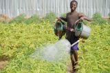 Ethiopian Children Face Food Shortages Amid Drought Crisis