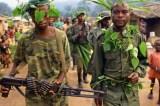 DR Congo: No Word on Missing UN Team