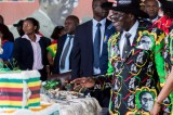 Zimbabweans who go to America to look for a job are stupid says Mugabe