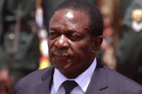Torture of arrested persons forbidden says VP Mnangagwa