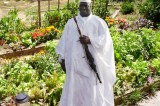 Exiled Former President Yahya Jammeh 'To Take Up Farming Full Time'