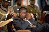 Zimbabwean govt panics as wheels come off