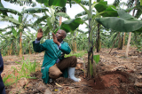 Meet Rwamagana's Farming Millionaire Who Started Out As a Casual Labourer