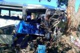 Zimbabwe Passengers' Association petitions Mugabe to ban King Lion buses