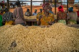 Milestone for Agriculture in East Africa