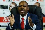 MDC Alliance presidential candidate Nelson Chamisa Threatens to Take ZEC Headon Over Printing of Ballot Papers