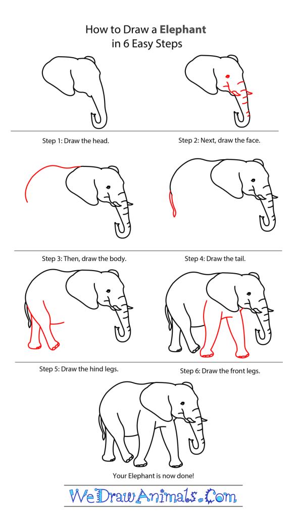 Elephant_tutor-01