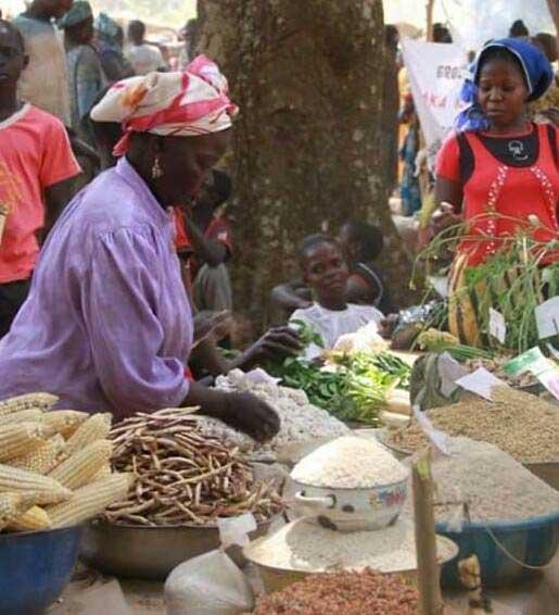 al-mercato-in-Africa