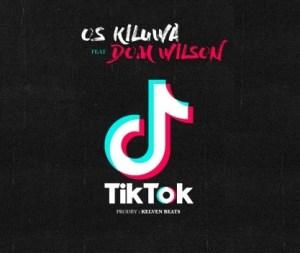 Os Kiluwa e Dom Wilson - TiK ToK