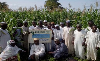 Members of Tudun Wada/Doguwa Apex Farmers Association in Kano state whose formation was also facilitated by SG2000-Nigeria