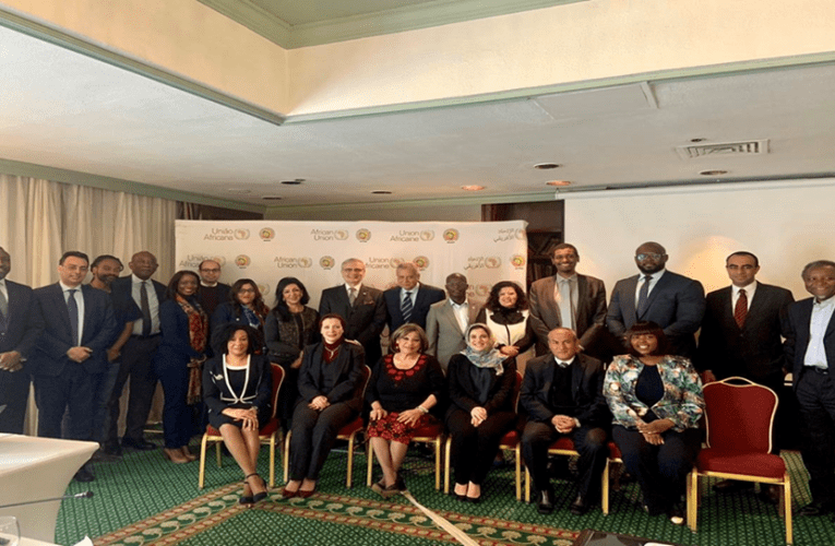 APRM: Putting into action BAPA+40 in Africa