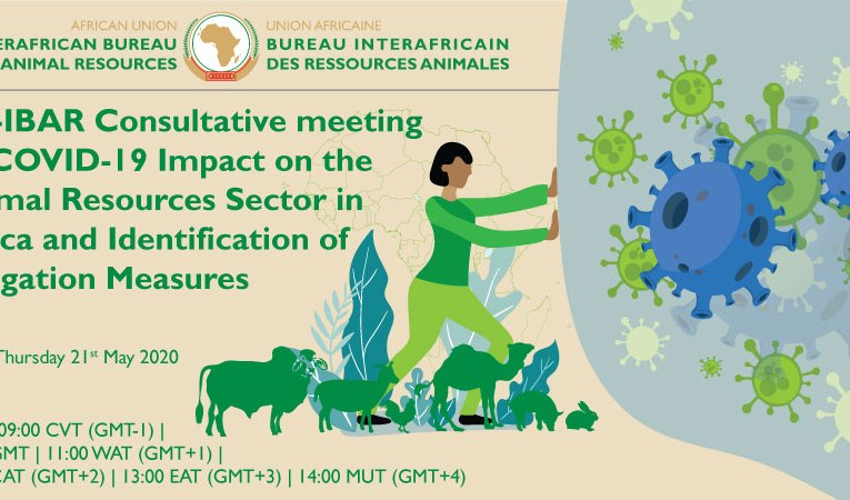 AU-IBAR begins impact assessment of COVID–19 on Africa`s animal resources