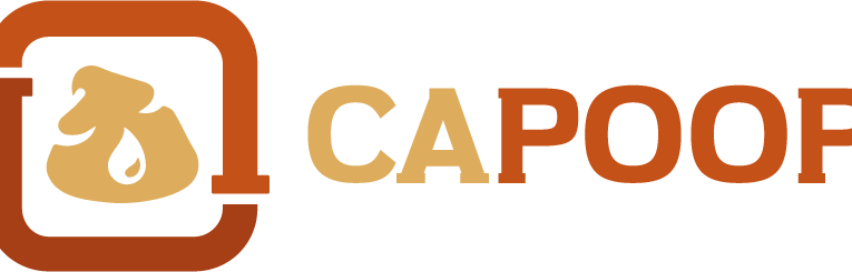 CAPOOP launches online knowledge-sharing platform for African WASH experts