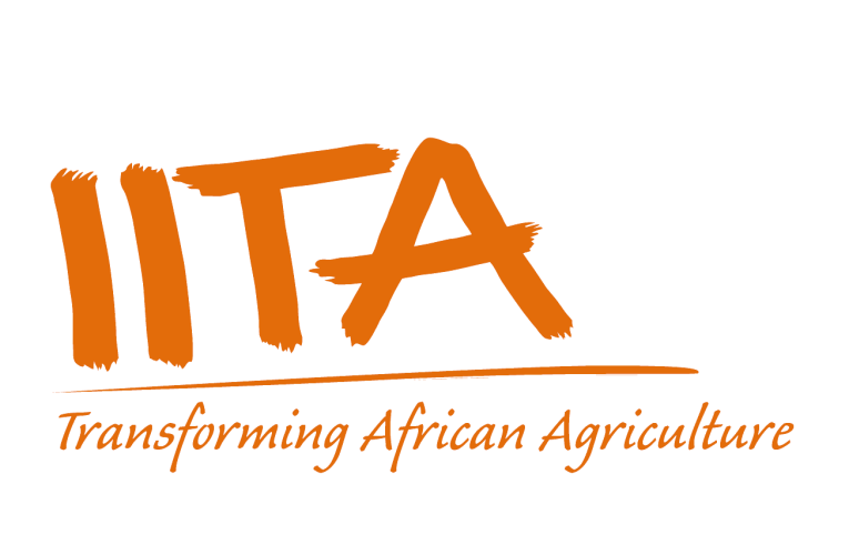 IITA, EAGC collaborate on safer grains for human, livestock consumption
