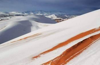 Snow images: Sahara desert ,Ain-Sefra,Algeria