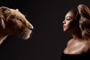Lion kin 2019
