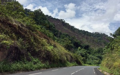 A Road Gobbles Up A Forest In Cameroon, But Big Data Helps Build A New Generation Of 'Forest Guardians'