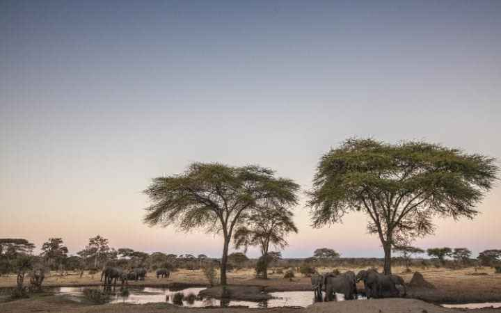 Botswana Introduces $30 tax As Tourist Levy