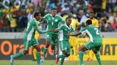 Nigeria afrique du sud