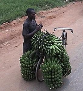 Plátanos sobre una bicicleta