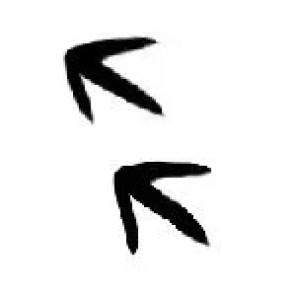emu aboriginal symbol