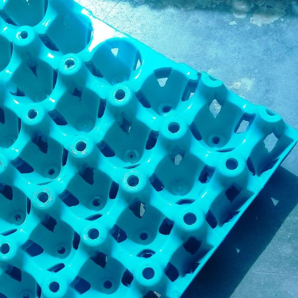plastic-egg-crate-tray