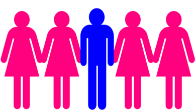 Photo of Bill on Polygamy adopted: Guineans may marry up to 4 women