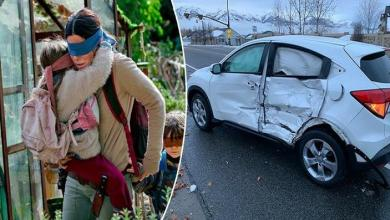 Photo of Bird Box Challenge: Blindfolded while driving, predictable result
