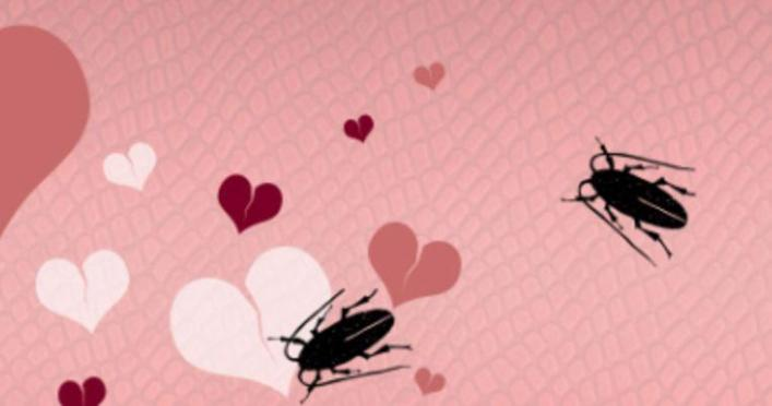 Name a cockroach or rat after your ex on Valentine's Day