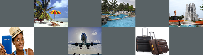 travel ins banner