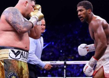 Boxing review of 2019