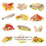 Delicious Seafood Set 4