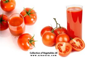 Collection of Vegetables 28