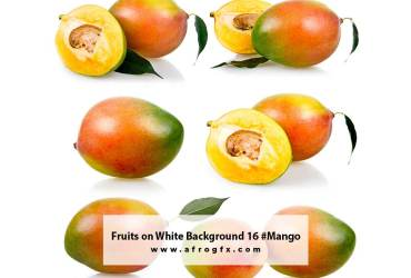 Fruits on White Background 16 #Mango