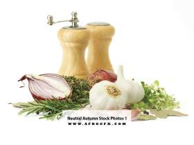 Neutral Autumn Stock Photos 1