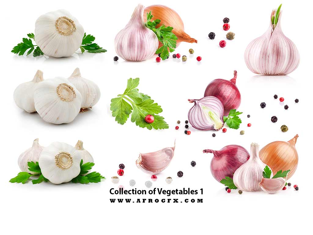 Collection of Vegetables 1