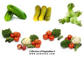 Collection of Vegetables 4